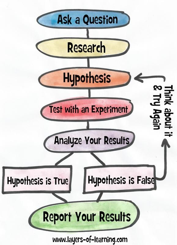 FREE Essay on The Steps of Scientific Method