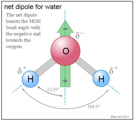 Water net dipole